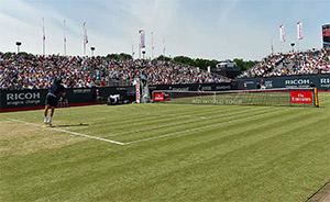 ATP Ricoh Open Gewinner 2017